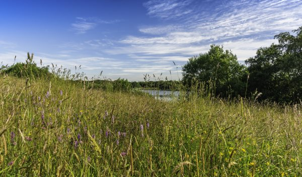 Blackleach Country Park